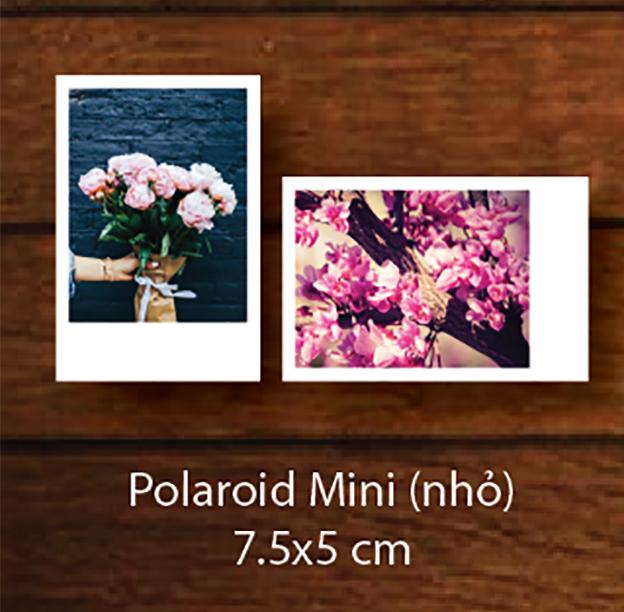 Polaroid Mini