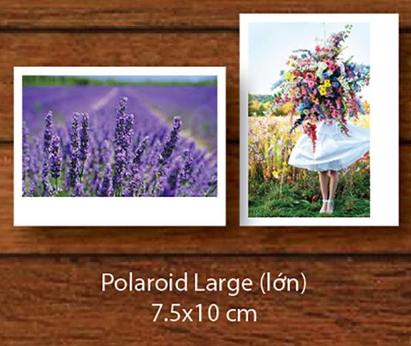 Polaroid Larger
